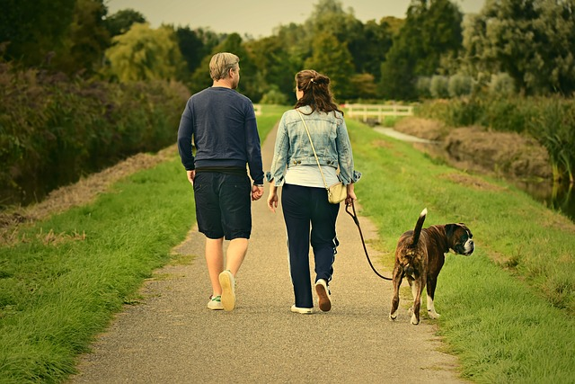 Factors For Choosing The Best Dog Breed For Your Family